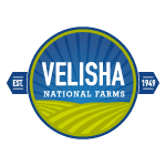 Fridge-Magnets-velisha